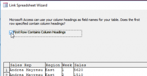 Connect to Excel in Access - Column Headings