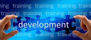 Developing your Organization's Training Program